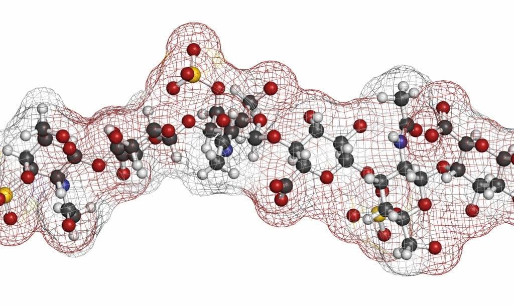 The Extracellular Matrix: Key To Unravelling Chronic Disease?